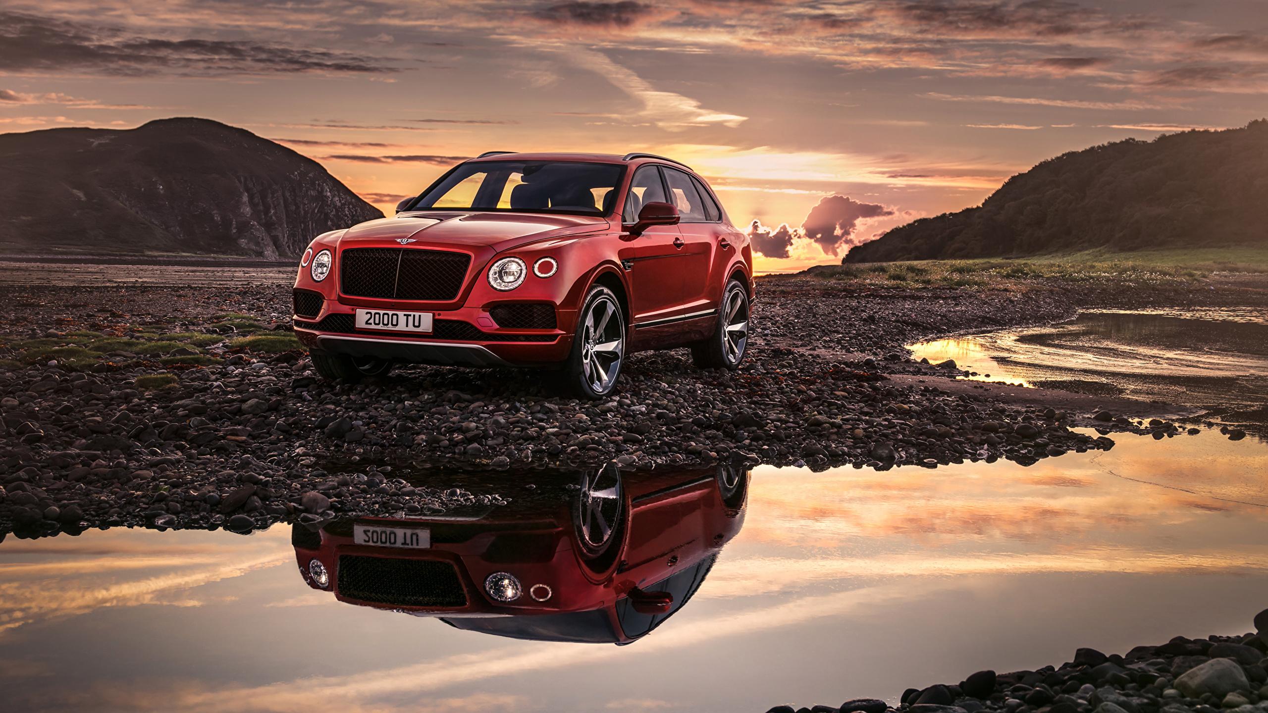 Картинка Bentley 2018 Bentayga V8 Worldwide красных автомобиль 2560x1440 Бентли красная красные Красный авто машины машина Автомобили