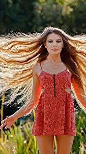 Фотография Волосы Платье Шатенки Guenter Stoehr молодая женщина