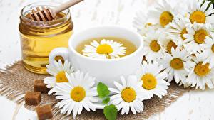 Обои для рабочего стола Мед Ромашка Чай Банка Чашка Еда Цветы
