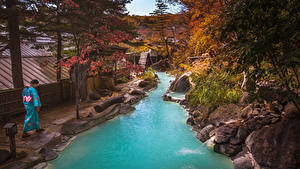 Картинки Таиланд Тропики Речка Осенние Камень Деревья Phuket