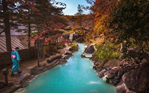 Картинки Таиланд Тропический Реки Осень Камни Дерева Phuket