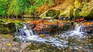 Картинка Ирландия Осенние Парки Водопады Камень Листва HDRI Ручей Dublin Природа