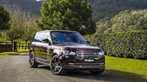 Фото Land Rover Внедорожник Бордовая Металлик 2016-17 SV Autobiography Автомобили