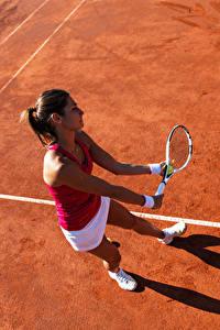 Фотография Теннис Шатенка Тренировка Девушки Спорт