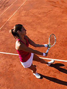 Фотография Теннис Шатенка Тренировка молодая женщина Спорт