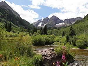 Фотография США Горы Леса Кусты Ручей Maroon Bells Colorado