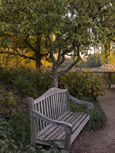 Картинки Парк Чикаго город Кусты Скамейка Деревья Botanic Garden Природа
