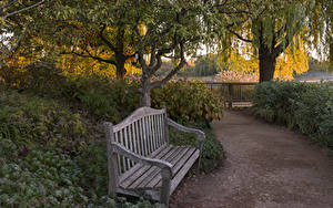 Картинки Парки Чикаго город Кусты Скамейка Деревья Botanic Garden Природа