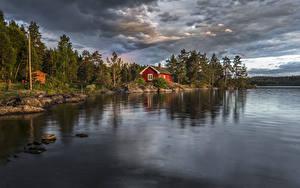 Обои Норвегия Речка Леса Здания Ringerike Природа