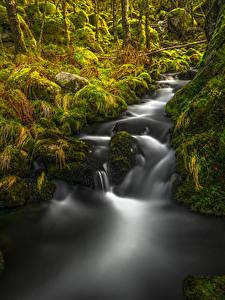 Фотографии Норвегия Водопады Осенние Камень Мох Rogaland