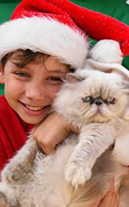 Фотография Новый год Кошки Мальчик Шапки Улыбка Милые ребёнок Животные