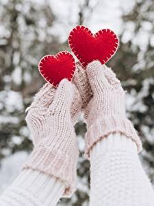 Картинка День святого Валентина Варежки Руки Сердца Два
