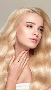 Фотографии Серый фон Блондинка Волосы Руки