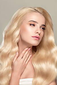 Фотографии Серый фон Блондинка Волосы Руки Девушки