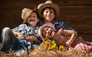 Фотография Подсолнухи Доски Трое 3 Мальчики Девочка Шляпе Улыбается Соломе ребёнок