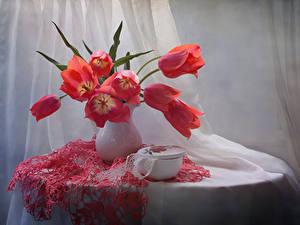 Картинка Тюльпаны Столы Вазы Красные Цветы