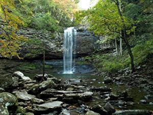 Фото Штаты Парки Водопады Камень Утес Cloudland Canyon State Park Природа