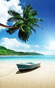 Обои Лодки Тропики Небо Пляж Пальмы