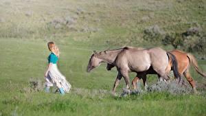 Фотография Лошадь Блондинка Трава Ходьба животное Девушки