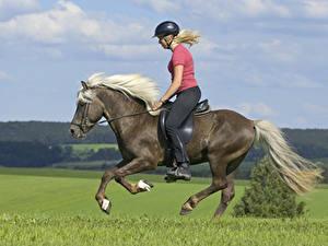 Картинка Верховая езда Лошади Бегущая Шлема Блондинка спортивные Девушки
