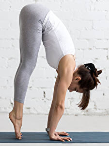 Фото Фитнес Гимнастика Шатенки Тренировка Ног молодые женщины Спорт