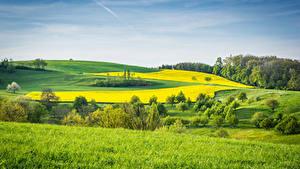 Картинки Пейзаж Поля Луга Трава Природа