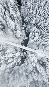 Картинка Зимние Дороги Сверху Дерево Снег