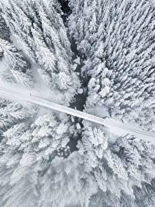 Картинка Зимние Дороги Сверху Деревья Снег