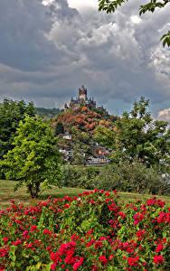 Картинка Германия Кохем Дома Замок