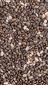 Обои для рабочего стола Текстура Много Зерна Chia Seeds Пища