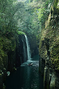 Фото Япония Реки Водопады Леса Утес Мох Takachiho Kyushu Природа