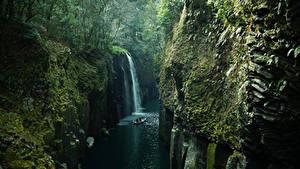 Фото Япония Реки Водопады Леса Утес Мох Takachiho Kyushu
