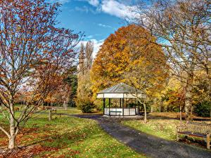 Картинка Ирландия Осенние Сады Дублин Скамья Листва Листья Botanic Gardens Природа