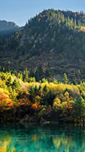 Обои Цзючжайгоу парк Китай Парк Гора Осень Озеро Пейзаж Дерева