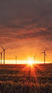 Фото Пейзаж Поля Рассветы и закаты Лучи света Солнце Ветряк Природа