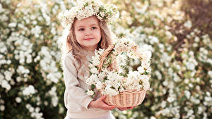 Картинки Цветущие деревья Девочка Корзина Милый Красивый Дети