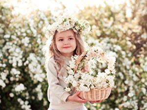 Картинки Цветущие деревья Девочка Корзина Милые Красивый Дети