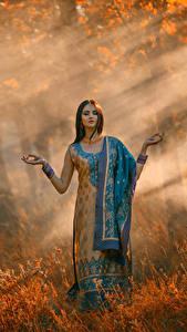 Картинки Осень Шатенка Платья молодые женщины