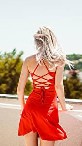 Обои Блондинки Платья Вид сзади Красная девушка