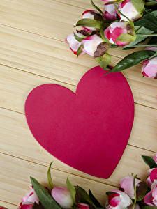 Фотография День всех влюблённых Розы Доски Сердце цветок