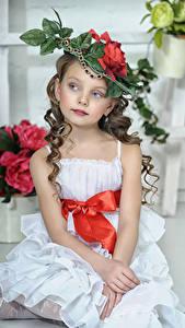 Картинка Девочка Фотомодель Сидящие Шляпы Платья Дети