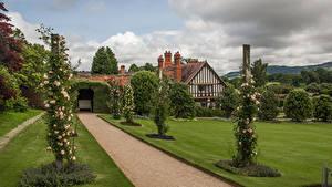 Фотографии Великобритания Сады Дизайна Кусты Газон Powis Castle Gardens Природа