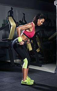 Картинка Фитнес Спортзал Тренировка Гантелей спортивный Девушки
