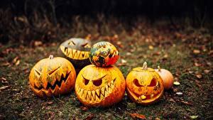 Картинка Хеллоуин Тыква Праздники