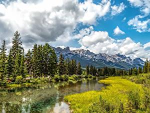 Фотографии Канада Горы Реки Дерево Траве Canmore Alberta