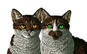 Фото Кошки Рисованные Два Белом фоне Животные