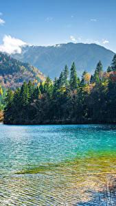 Обои Цзючжайгоу парк Китай Парки Озеро Горы Леса Пейзаж