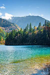 Обои Цзючжайгоу парк Китай Парк Озеро Гора Лес Пейзаж Природа