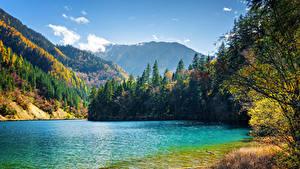 Обои Цзючжайгоу парк Китай Парк Озеро Гора Лес Пейзаж