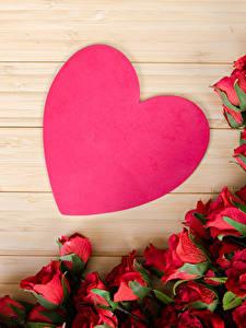 Картинки День всех влюблённых Роза Много Доски Сердце Цветы